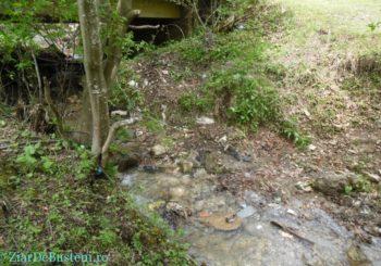 Buşteni – marginea Parcului Natural Bucegi – sesizarea de ieri a avut efect